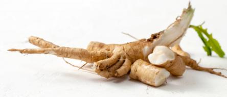 Chicory Root Extract (Min 90% Fructo-oligosaccharides)