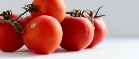 Tomato extract (Lycopene)